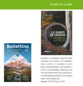 """""""Le radici dei boschi"""", Bollettino SAT n. 2 - 2020"""